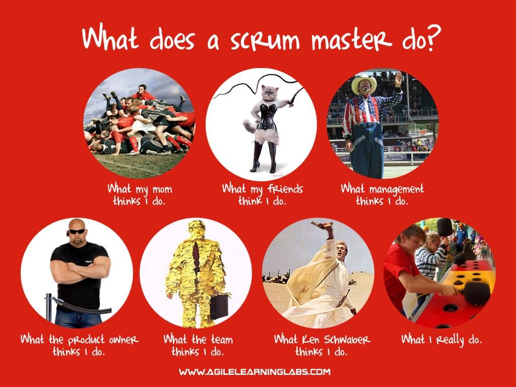 What does a scrummaster do?